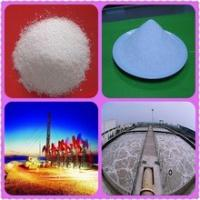 Quality Paper Making Anionic / Cationic Polyacrylamide PAM For Oil Drilling White Powder for sale