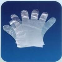 Wholesale Disposable Gloves/PE Glove/LDPE Glove/ Plastic Glove from china suppliers