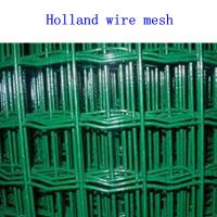 Wholesale Holland wire mesh from china suppliers