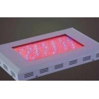 Wholesale 2W Environmentally Energy-Efficiency LED Plant Grow Lights WL-BU002A6101 from china suppliers