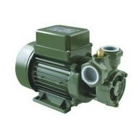 Wholesale Electric Power Vortex Water Pump Screw Pump Structure , Externally Ventilation  Cooling from china suppliers