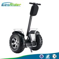 Wholesale 110-240V Two wheeled electric vehicle segway with 21 inch shock - absorber from china suppliers