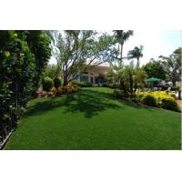 Wholesale 10000Dtex Artificial Grass Carpet for Decoration with Yarn Height 35mm , Gauge 3/8 from china suppliers