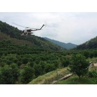 Wholesale Pesticide Spraying Helicopter / UAV Agricultural Spraying with 15KG Payload Capacity from china suppliers