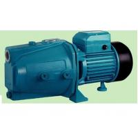 Wholesale Portable Electronic Jet Water Pump Machine Copper Wire 0.75hp / 0.55kw Output from china suppliers