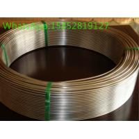 Wholesale 300 Series AISI Steel Stainless Steel Coils and Strips TP321 TP316 TP347 TP904L from china suppliers