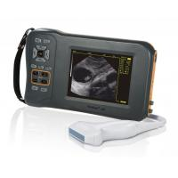 Wholesale Monochrome Display Veterinary Ultrasound Scanner L60 With 32 Digital Channels from china suppliers