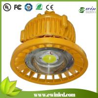 Wholesale 30W LED Explosion-proof Light with IP66 Protection Grade, COB High Brightness from china suppliers