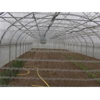 Wholesale plant anti insect net from china suppliers