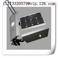 Wholesale 20W/12V COB Integrated LED Solar Garden Light with Body Sensor from china suppliers