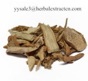 Wholesale Cynanchi Wilfordii Radix Root Extract, Cynanchum bungei Extract, 10:1, Chinese manufacturer, Shaanxi Yongyuan Bio-Tech from china suppliers