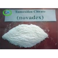 Wholesale White Crystalline Powder Anti Estrogen Steroids For Men Hair Loss , Treatment Nolvadex from china suppliers