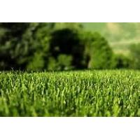 Wholesale Colored landscaping artificial grass 36mm for garden / park from china suppliers