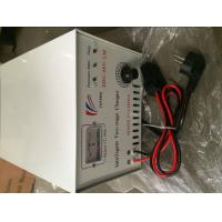 Quality Yufeng 48V / 60V 220V Intelligent Charger Tricycle Spare Parts for sale