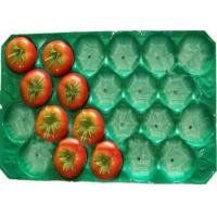 Wholesale Convenient Plastic Fruit Tray , Tomato Trays Packaging Professional Mould Design from china suppliers
