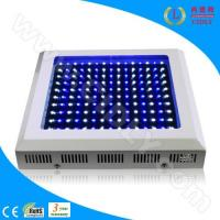 Wholesale 150W LED Aquarium Light for Corals & Reefs from china suppliers