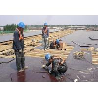 China Exporter Construction Material Film Faced Plywood for Construction concrete formwork plywood with good price