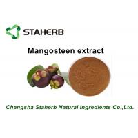 Quality Pure Natural Mangosteen Pure Herbal Extracts Mangostin Powder For Pharma for sale