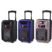 Wholesale Pro Active Outdoor Portable Bluetooth Trolley Speaker Battery Powered PA System from china suppliers