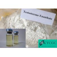 Wholesale Testosterone Steroid Hormone Muscle Building Steroids Test E Testoviron Depot Testosterone Enanthate 250mg/ml from china suppliers