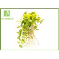 Wholesale Handled Natural Bamboo Flower Pots For Green Garden Plants Customized  Shape from china suppliers