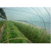 Wholesale Agricultural Soft Greenhouse Plastic Film , UV Protection Clear Plastic Roll from china suppliers