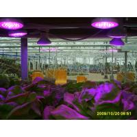 Quality full spectrum led grow lights for sale