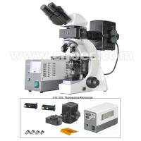 Wholesale Infinite Binocular Fluorescence Microscope 3W LED Lamp B and G Filter A16.1032 from china suppliers