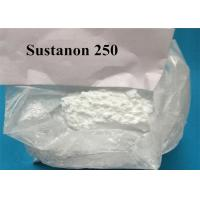 Wholesale Four Different Esters Fat Stripping Steroids / Sustanon 250 Steroids To Cut Fat from china suppliers