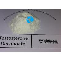 Buy cheap Raw Testosterone Powder Decanoate / Test Deca  Steroids Powder Anabolic Hormone 5721-91-5 from wholesalers