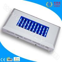 Wholesale 60W LED Aquarium Light for Coral Reef from china suppliers