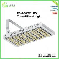 Wholesale Resounding Outdoor Led Light Tunnel Luminaire 300w For Baseball Field from china suppliers