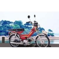 Wholesale Gas scooter (Wanliang) from china suppliers