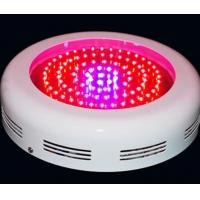 Wholesale Energy efficient 3W RGB Led Grow Lighting 630nm/ 460nm with Intelligent monitor system from china suppliers