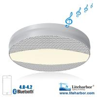 China New product 120VAC 1000LM 12W Ceiling LED Bluetooth Speaker Light on sale