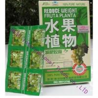 Wholesale 2013 New generation reduce weight fruta planta from china suppliers