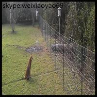 Wholesale fence galvanized for cattle, deer and sheep cow  fence wire mesh(factory price) from china suppliers