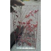 Wholesale Flat Interior Glass Partitions With Flowers Real Plant For Entrance Door from china suppliers