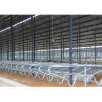 Wholesale Durable Customized Bedding Cow Milking Stall With Double Row Type from china suppliers