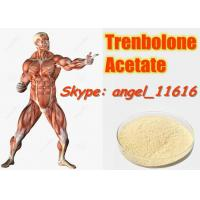 Quality 10161-34-9 Tren Acetate Trenbolone Powder For Fitness / Muscle Building Steroids for sale