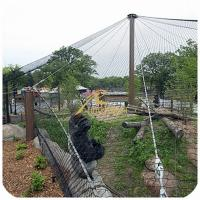 Buy cheap Anping high quantity SS Rope Mesh For Protection Or Decoration from wholesalers