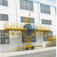 Wholesale 1000kg Loaded Steel Construction Lifting Platform, Single-Mast Climbing Working Gondola 8m from china suppliers