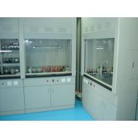 Wholesale lab ventilation equipment, pp ventilation cabinet,lab fume hood in malaysia from china suppliers
