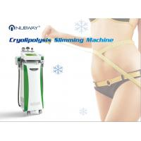 Quality 2016 hottest !!! cryolipolysis slimming machine, 3 cooling system, fat freezing treatment, made in China, hot in USA for sale
