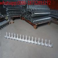 Wholesale 200g/m2 zinc coated galvanized wall spikers/stainless steel fence spikers/steel wall spikers fencing from china suppliers