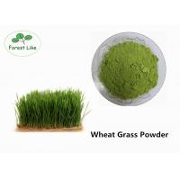 China Pure Natural Organic Wheat Seedling Powder Superfood Supplement Powder on sale