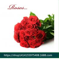 Wholesale Fresh cut Flowers red rose for flower shop Wholesale Roses Flowers Corola from flower base good quality to flower gifts from china suppliers