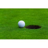 Wholesale Fake plastic golf artificial turf aging resistance for outdoor golf decor from china suppliers
