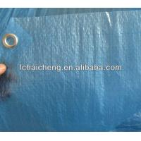 Wholesale 55gsm blue light duty blue tarpaulin from china suppliers