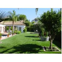 Buy cheap OEM 12500Dtex 36mm PE Outdoor Artificial Grass Turf for Decoration with Gauge 3/8 from wholesalers